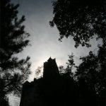 Recensione: Il Respiro dell'albero di Ivan Belloni